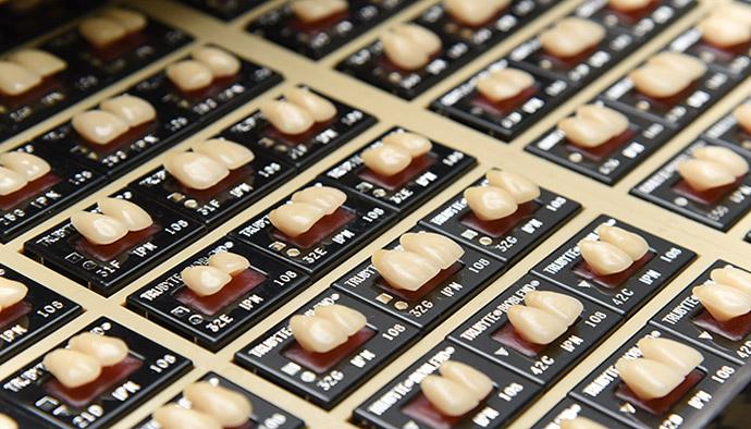 歯が生み出す個性と美しさ